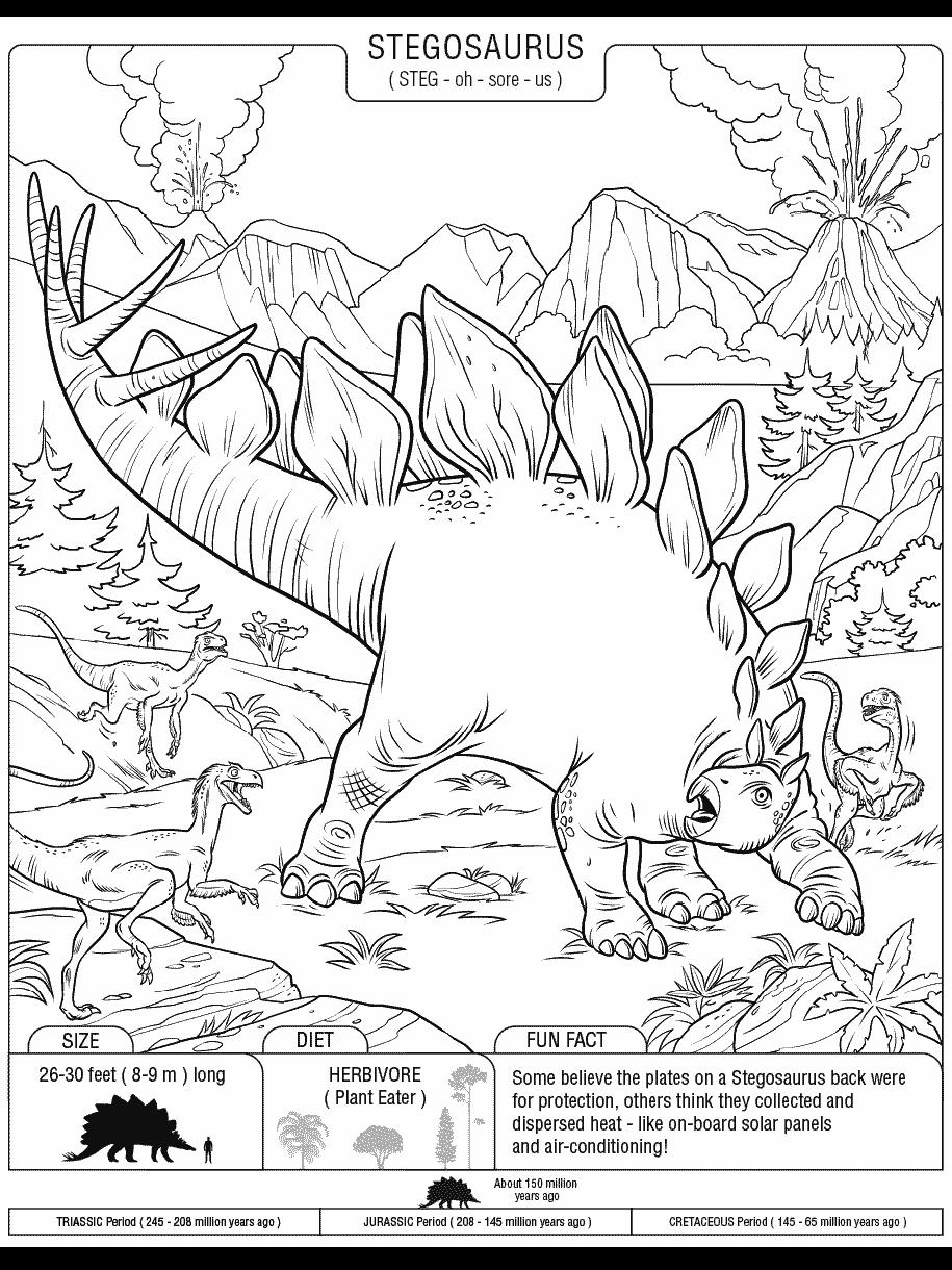 - Stegosaurus Crayola.com