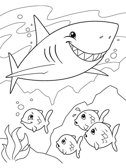 Shark Coloring Page Crayola Com