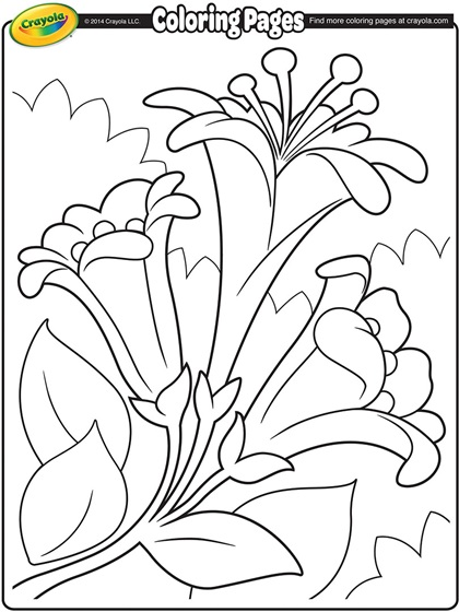Easter Lillies Coloring Page