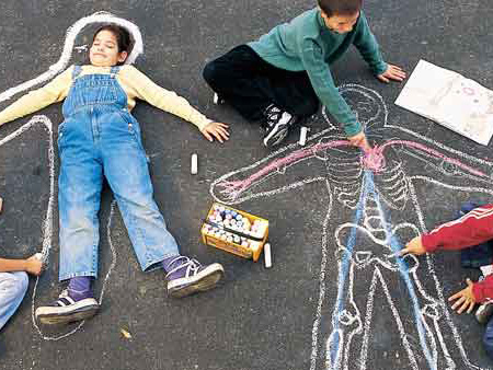 Draw Inside the Human Body lesson plan